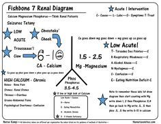 This is the seventh of my series explaining the renal fishbone this is the seventh of my series explaining the renal fishbone diagram with the calcium magnesium bun creatininelab valuesnursing ccuart Images