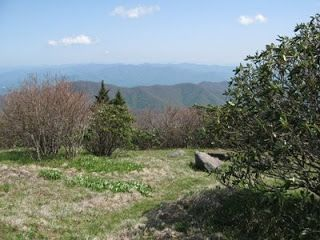 The Smoky Mountain Hiking Blog: The 7 Best Hikes in the Smoky Mountains