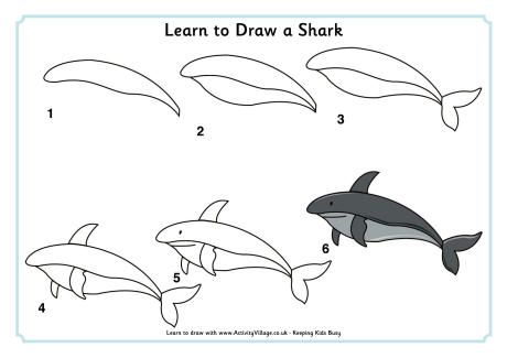 Learn To Draw A Shark Water Color In 2019 Pinterest Animal