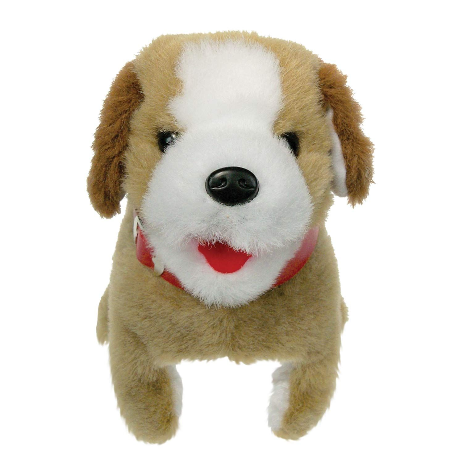 Westminster Sparky The Fabulous Flip Over Pet Dog More Info