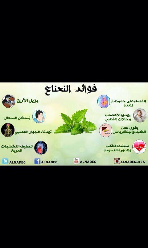 معلومات Health Tips Health And Wellness Metabolism Boosting Foods