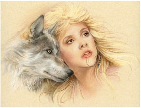 Stevie and the Wolf by Johanna Pieterman