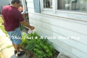 Best Product For Cleaning Aluminum Siding Cleaning Aluminum Siding How To Clean Aluminum Aluminum Siding