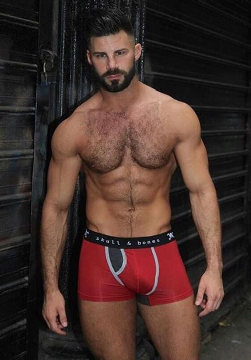 Free gay hairy muscle