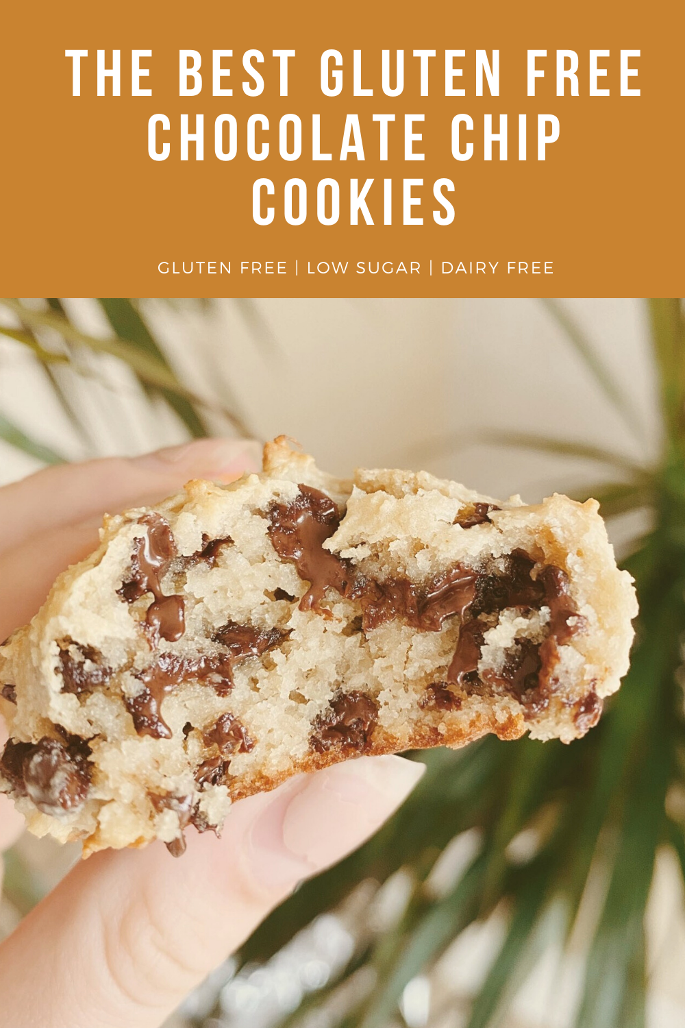 DAIRY FREE, GLUTEN FREE, LOW SUGAR; These are the chewiest, fluffiest cookies you'll ever have and they're gluten free! No refined sugars, minimal ingredients, and so delicious. #glutenfree #glutenfreecookies #glutenfreechocolatechipcookies #cookierecipes #glutenfreecookies #cookierecipe #chewycookies #chocolatechip #paleocookies #thebestcookies #healthycookies #healthycollegestudent #collegerecipes