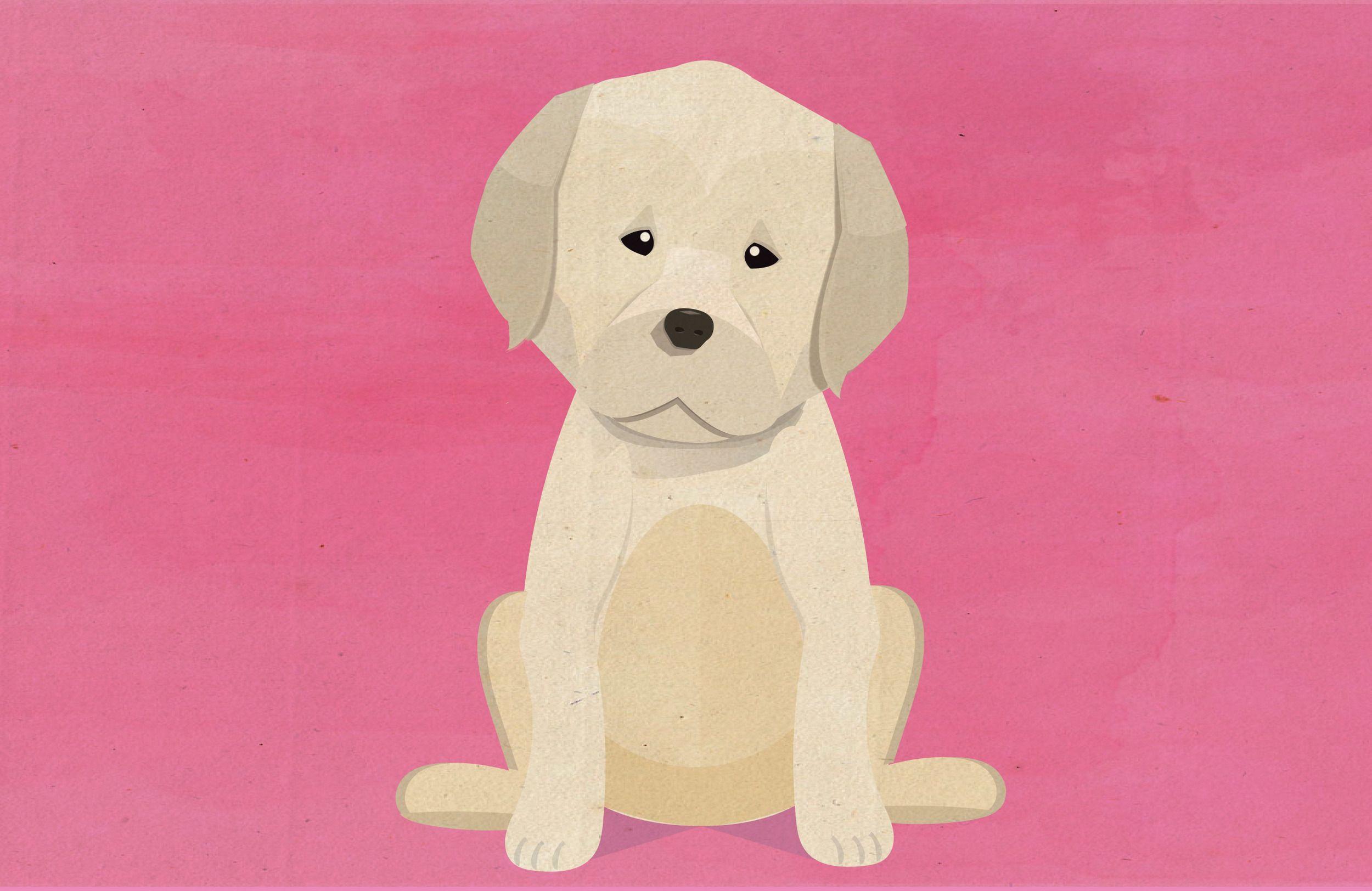 Labrador - Using Textures with Vectors