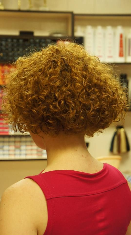 Permed Bob Back View Is So 80 S In 2019 Short Curly