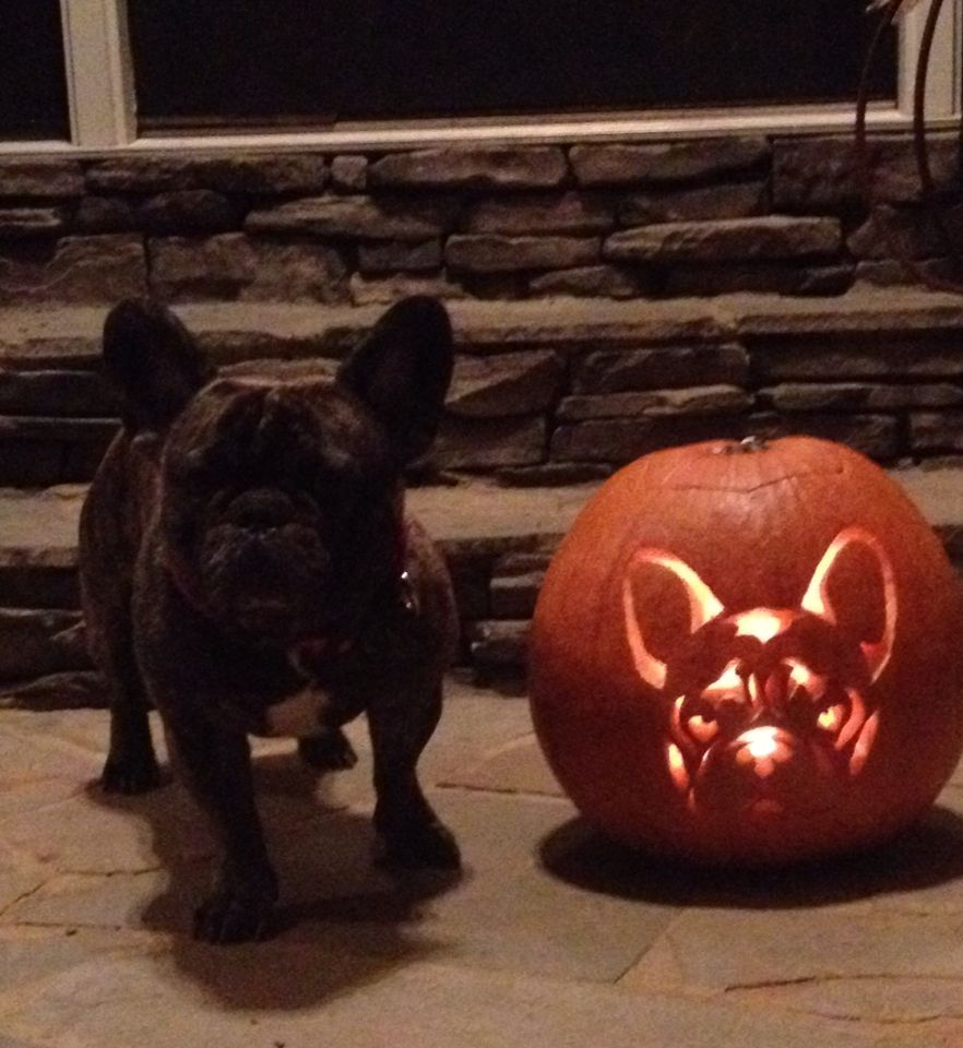 My Sweet Daughter Carved This Pumpkin! Looks Just Like Our