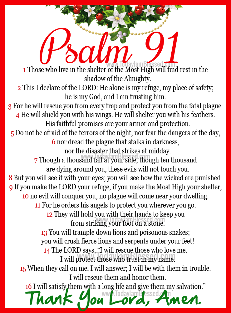 Image result for psalms 91