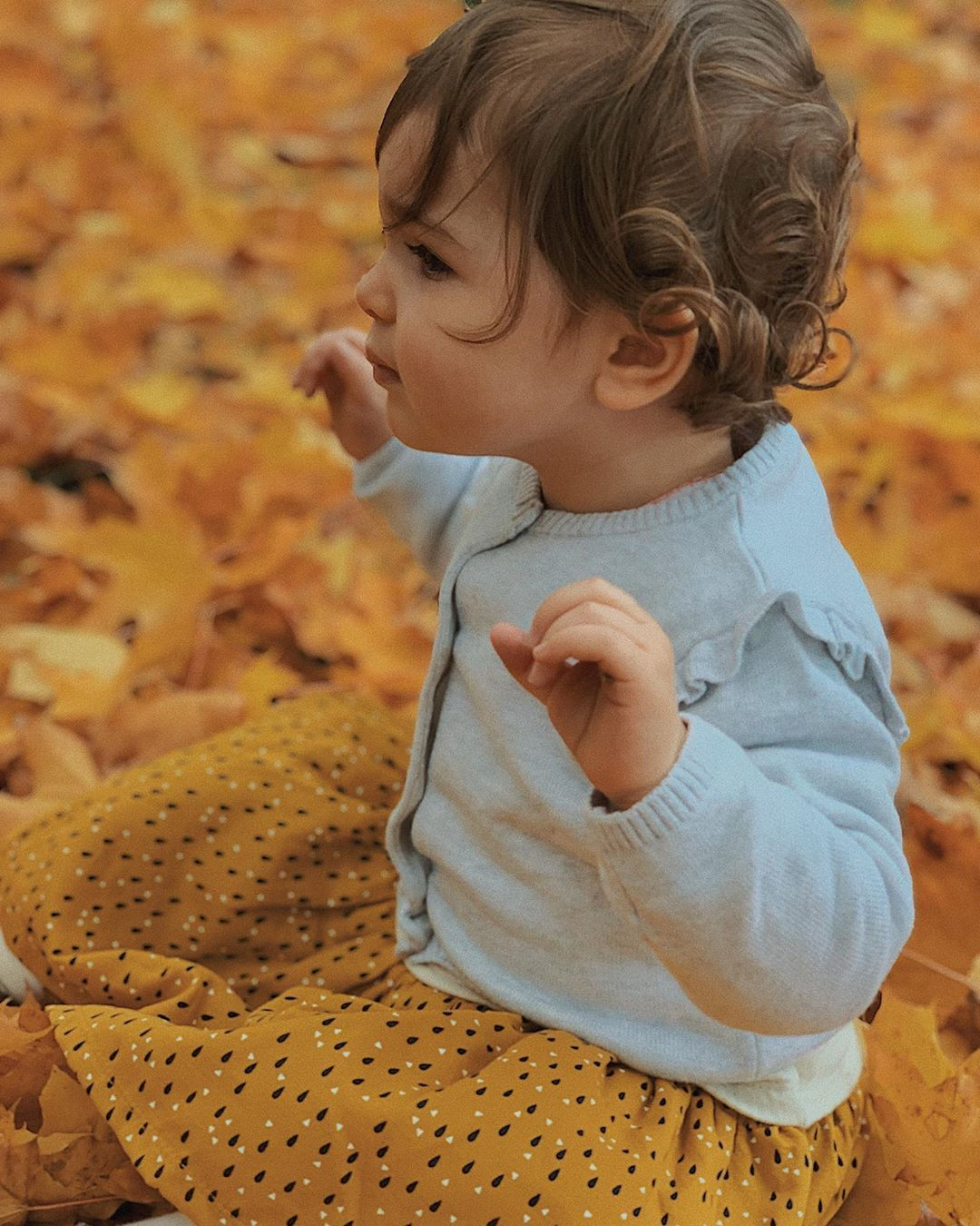 Petite fleur d été parmi les feuilles d automne
