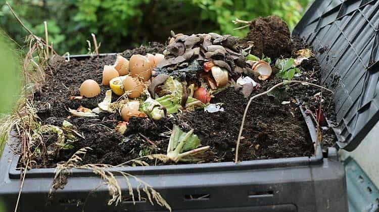Composting Isnu0027t Just For The Backyard. We Have Compiled The Best Indoor  Compost
