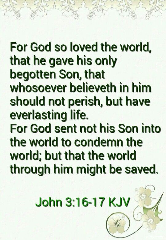 Image result for john 3:16-17 kjv
