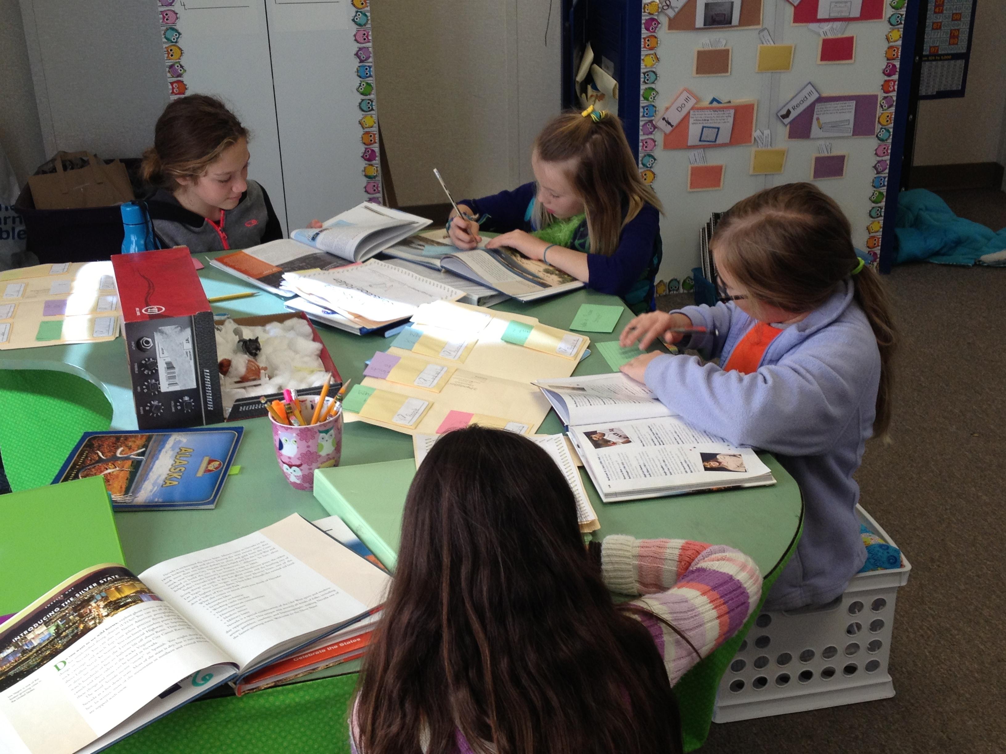 Admission essay writing zoo