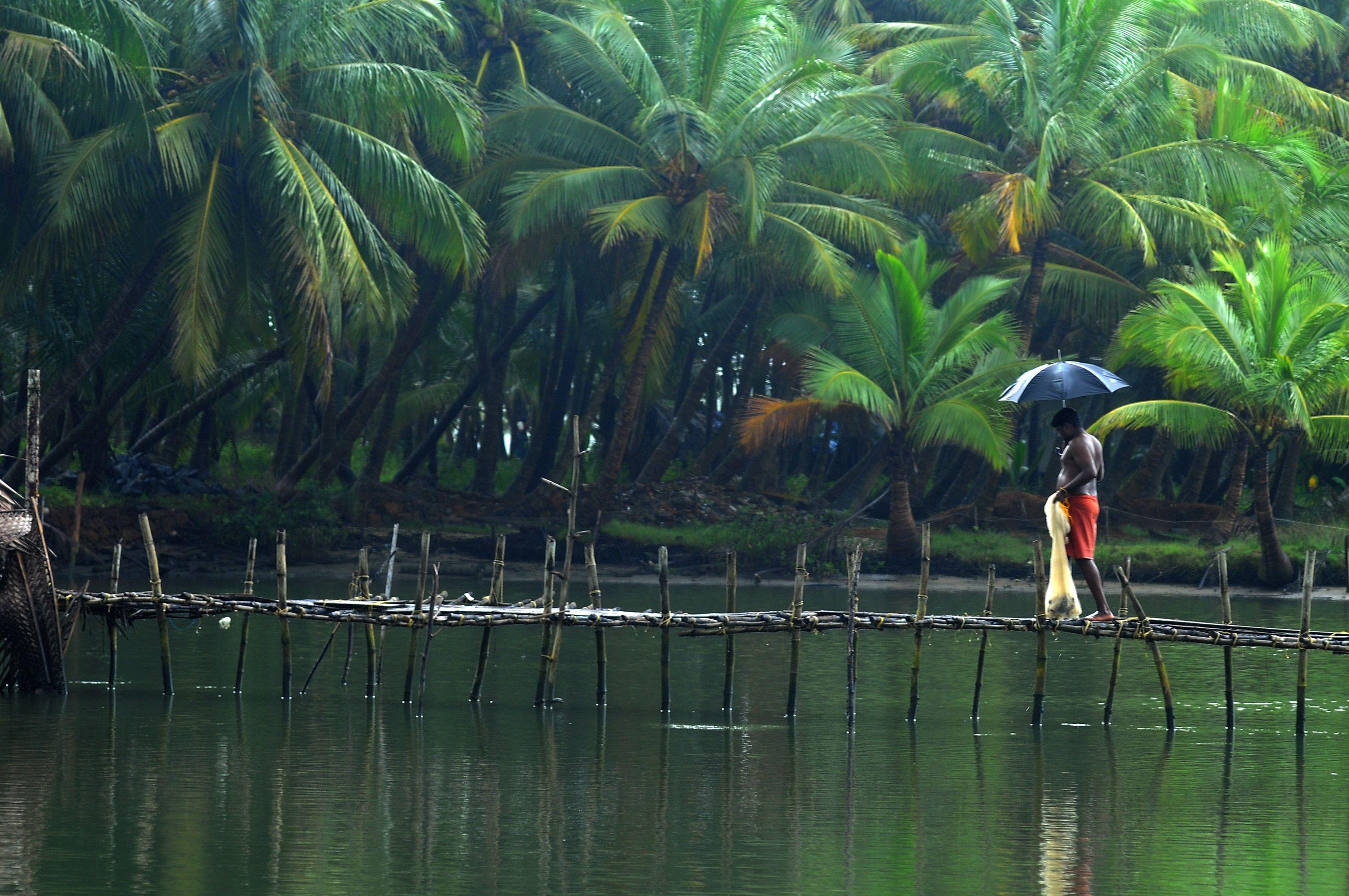 Kerala Backwaters South India INDIA'S BEAUTY South
