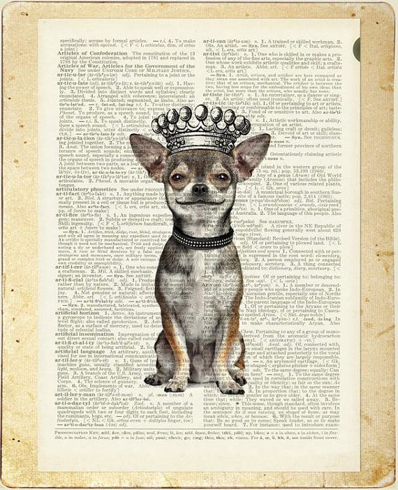 Chihuahua Smiling And Crowned Print By Fauxkiss On Etsy With Images Chihuahua Drawing Book Page Art Crown Illustration