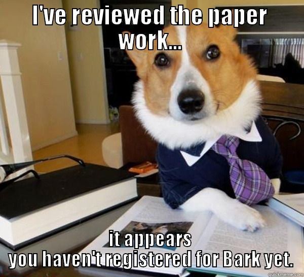 Bark For Life Committee Funny Animal Pictures Funny Dog Memes Dog Memes