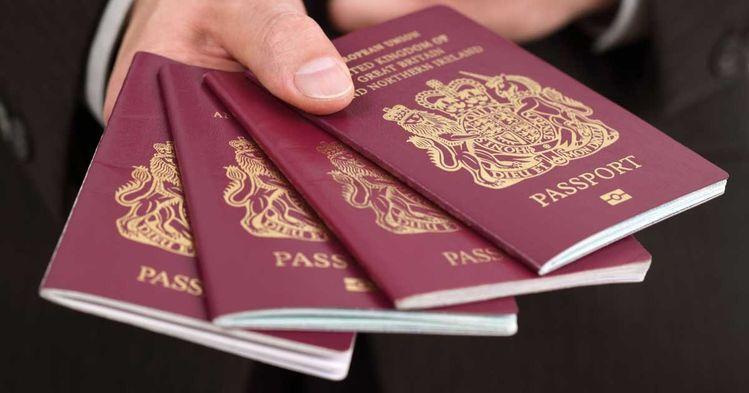 Passport, Passport online