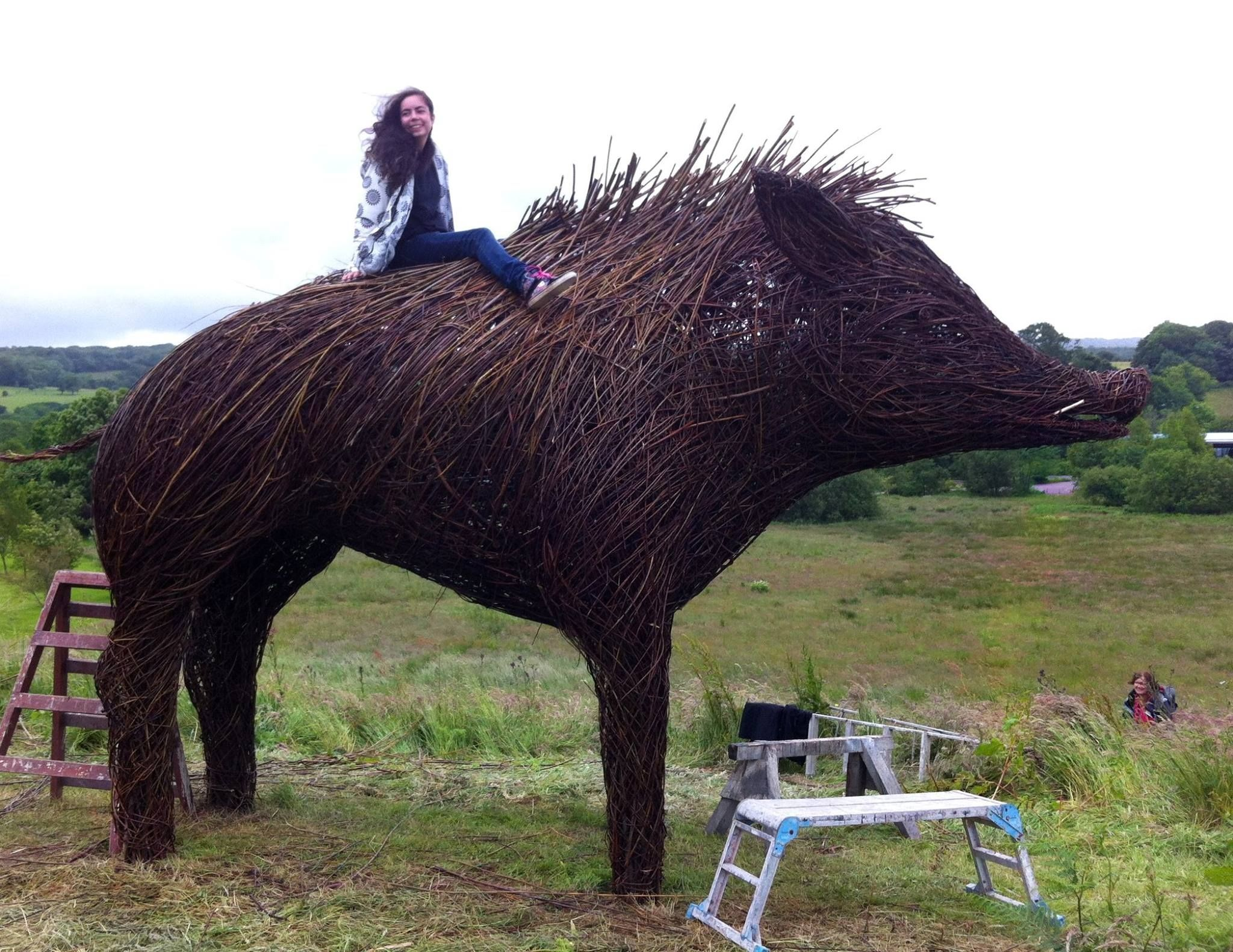Michelle Cain and her team at Welsh Basket Makers built a large sculpture of a wild boar that stands at the National Botanic Garden of Wales in Carmarthenshire.