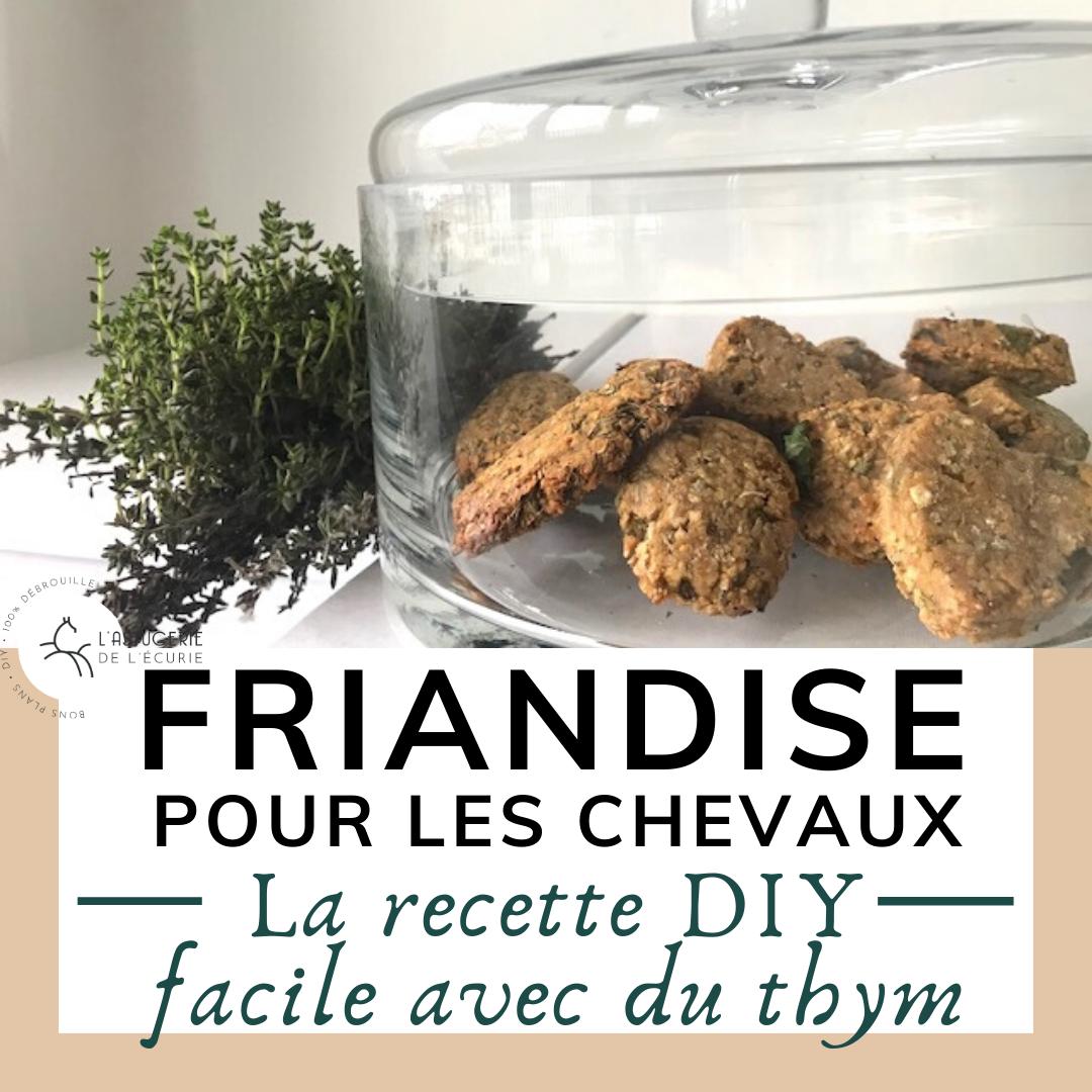 Friandise Maison Pour Mon Cheval Le Bonbon Diy Au Thym Friandises Recette Facile Cheval
