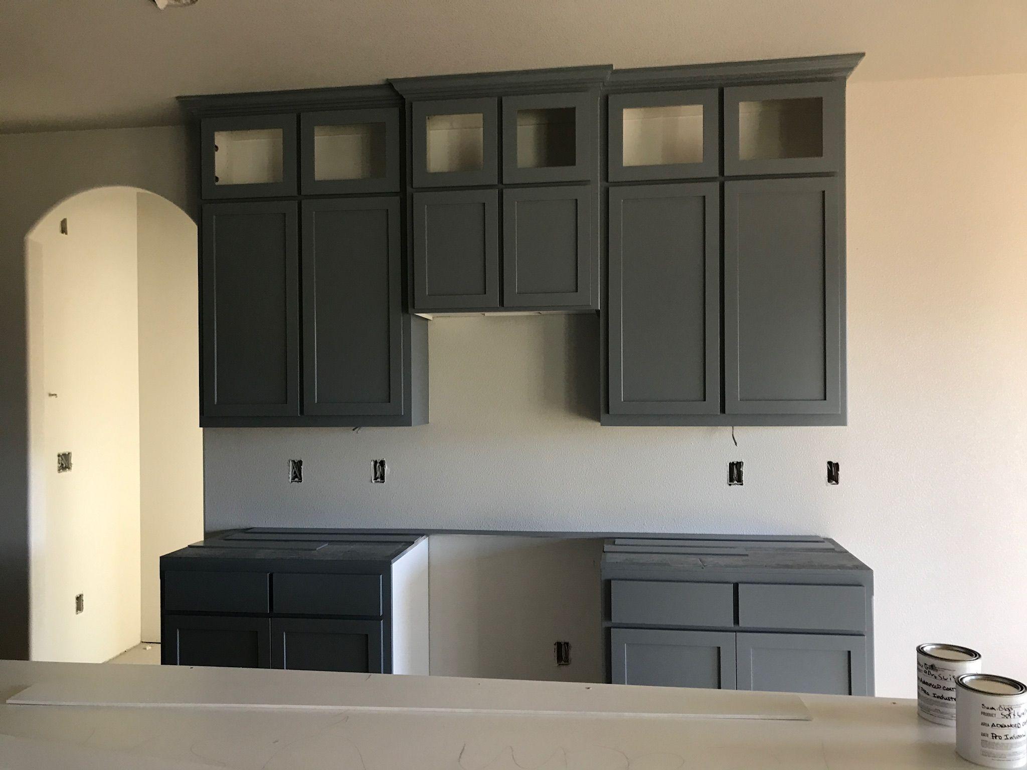 She Rein Williams Software Grey Kitchen Cabinets Master Bedrooms Decor Bathroom Design Software Grey Cabinets