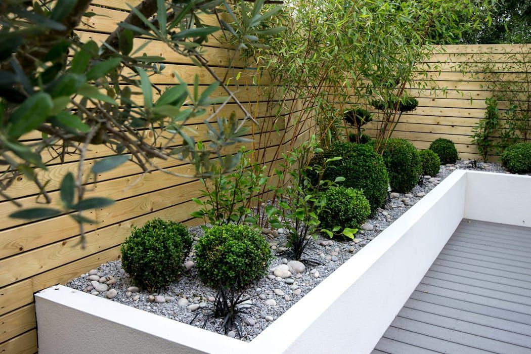 Small, low maintenance garden minimalist style garden by ...