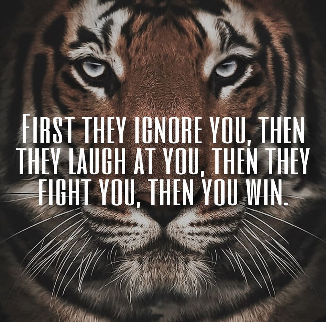 Motivational Tiger Quotes Youtube