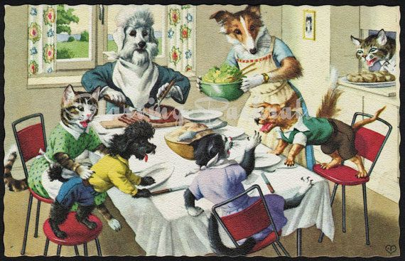 Alfred Mainzer Dressed Cats Dogs Doggie Dinner Table Postcard By Starvingpackrats 6 99 Dog Cat Your Pet Cats