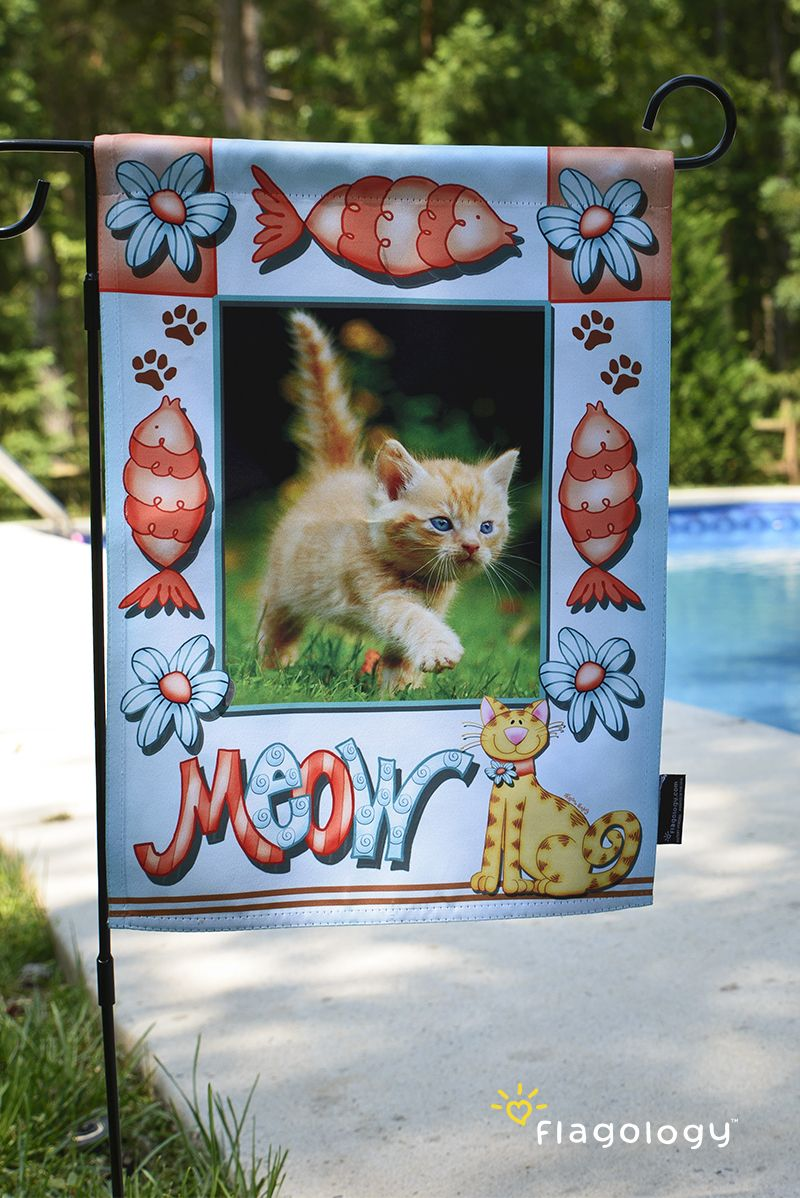 Show off your favorite cat photo in one of our artist frames! Make ...