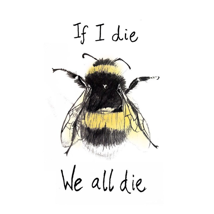 Hjrmackereth A Bee With An Important Message Available On