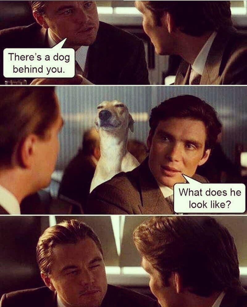 Hahaha!   Laugh, I laughed, Laughing so hard