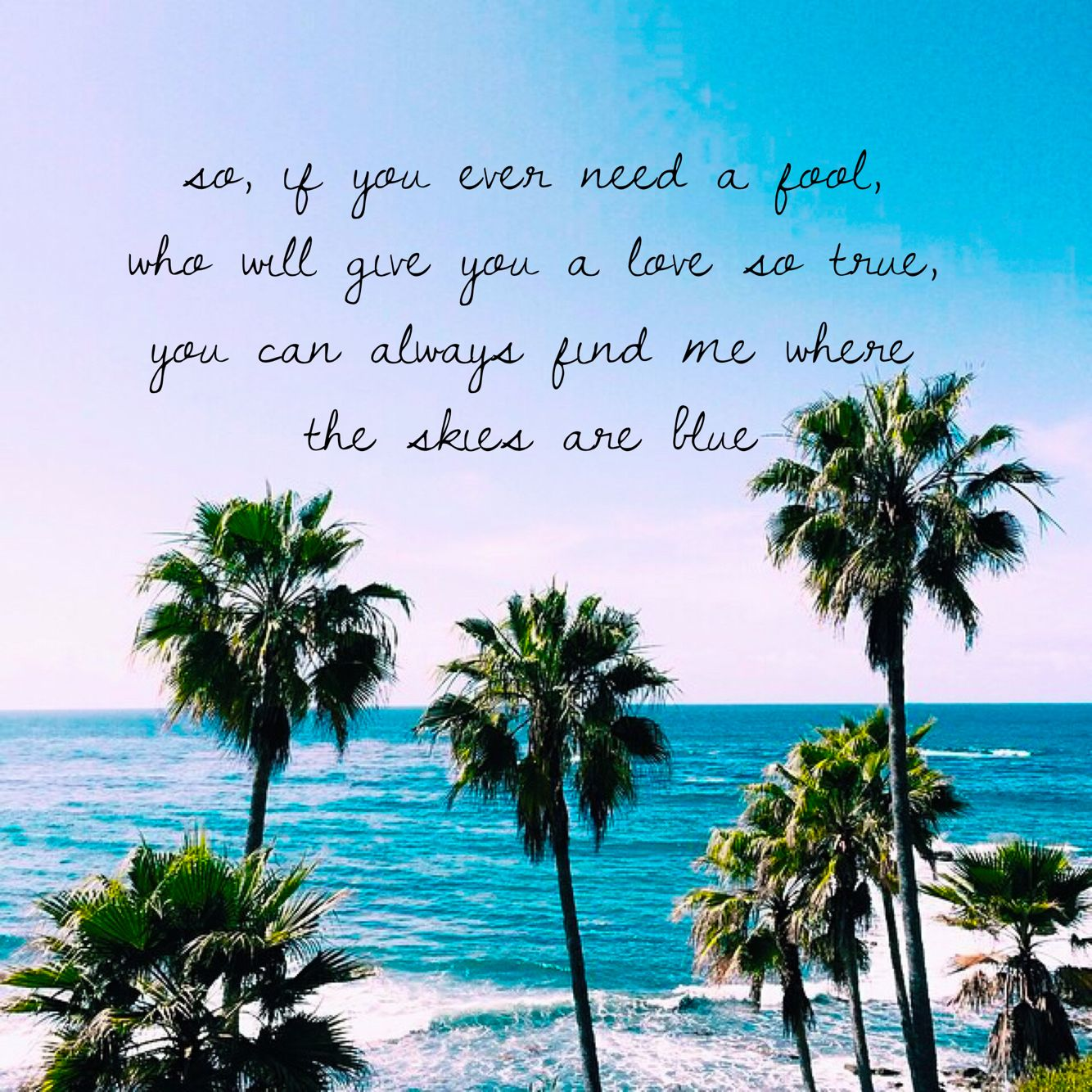 Palm Tree Beach: Where The Skies Are Blue (The Lumineers)