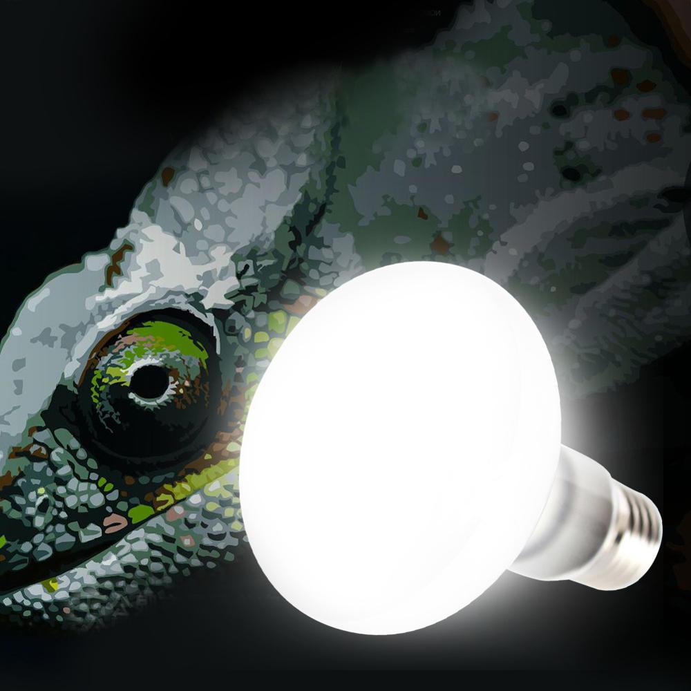 E27 25w 40w 60w 75w 100w Uva Light Bulb Reptile Pet Terrarium Brooder Heater Lamp Ac220 240v Uva Light Reptiles Reptiles Pet