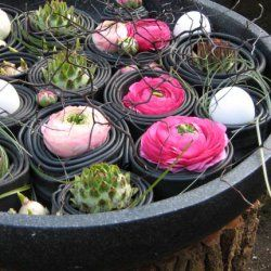bloemstukken blom wageningen bloemschikken pinterest gestecke blumen und ostern. Black Bedroom Furniture Sets. Home Design Ideas
