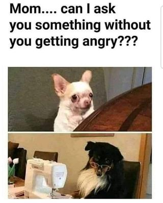 You something without you getting angry??? - )
