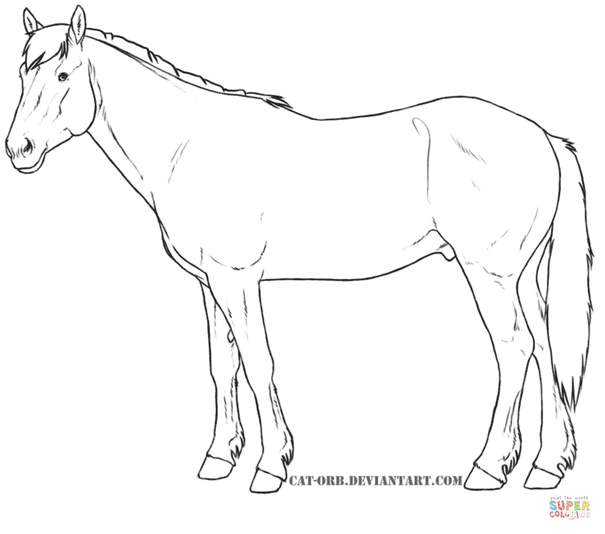 Horses Coloring Pages Free Art In 2019 Horse Rhpinterest: Mustang Horse Coloring Pages At Baymontmadison.com