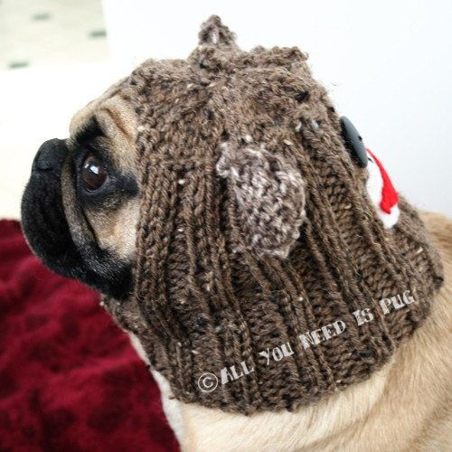 Dog Hat  Sock Monkey Hat by jessicalynneart on Etsy, $26.00