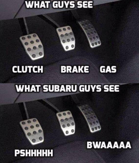 What guys see, What Subaru guys see, I wish I had a stick again.