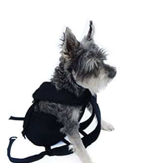 10 Best Ruffit Dog Carriers Images