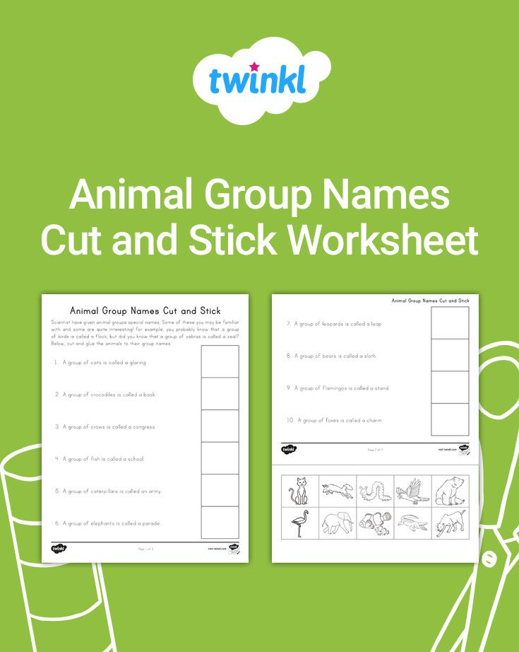 Introduce students to names of different animal groups with ...