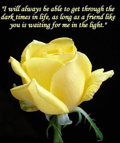 Yellow Roses Friendship Quotes Yellow Roses Flowers