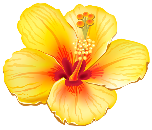Pin On Vaction Summer Clipart