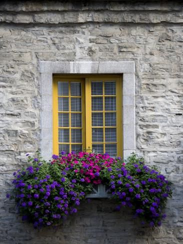 Photo of Flowers Bloom in a Window Box Photographic Print by Pete Ryan at AllPosters.com