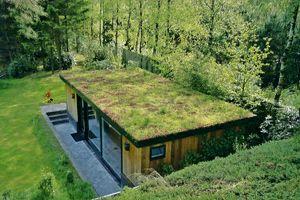 un toit v g talis est une bonne isolation pour la maison espace vert toitures pinte. Black Bedroom Furniture Sets. Home Design Ideas