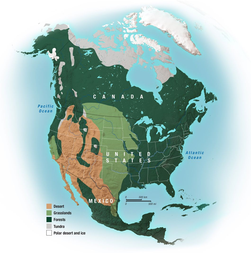Vegetation Regions of North America Kids Discover Earth