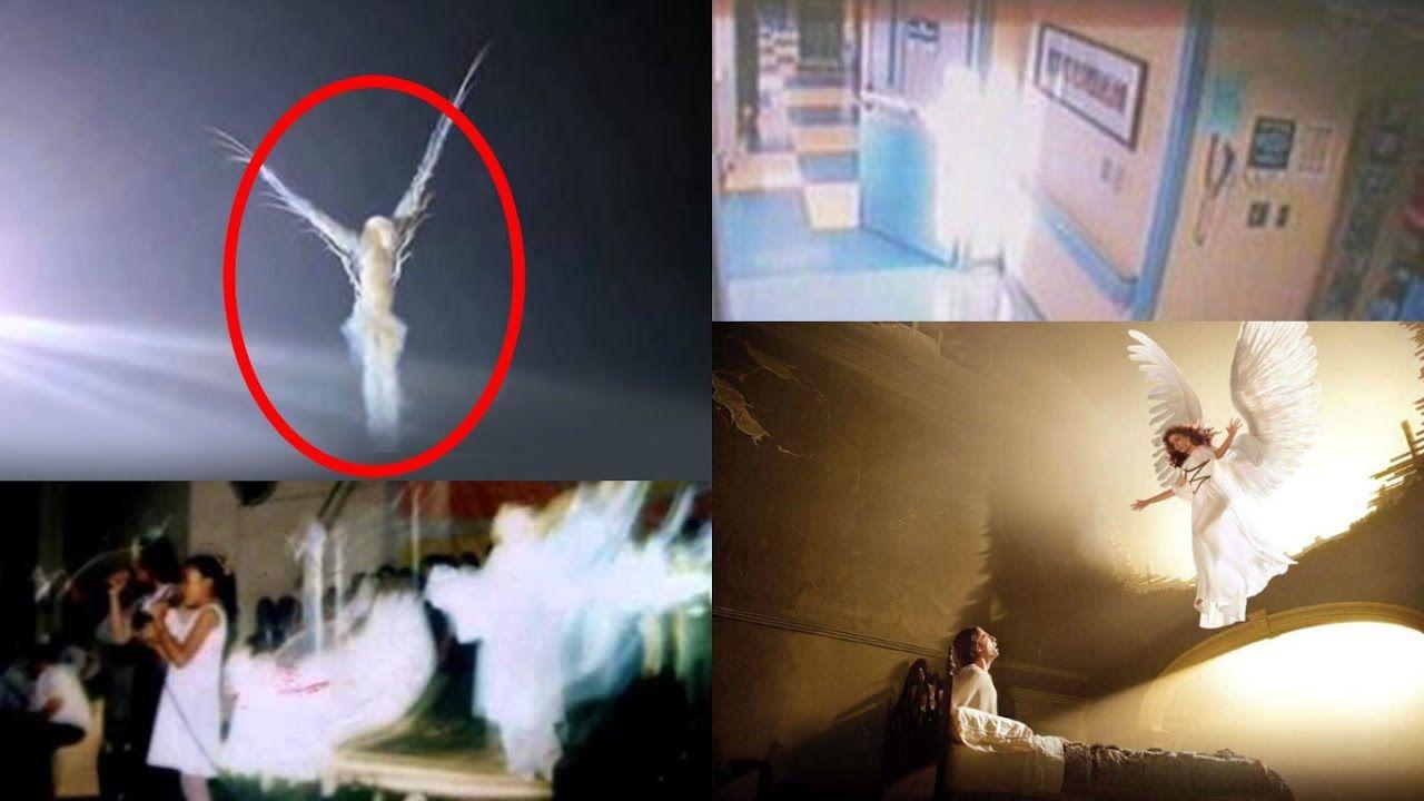 коллекция фото ангелов в реальной жизни самосвалы начали ездить