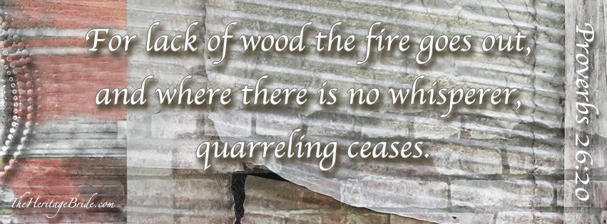Proverbs 26:20 For lack of wood the fire goes out, and where there is no whisperer quarreling ceases.  #Proverbs #Proverbs26 #gossip #theheritagebride #barnwedding