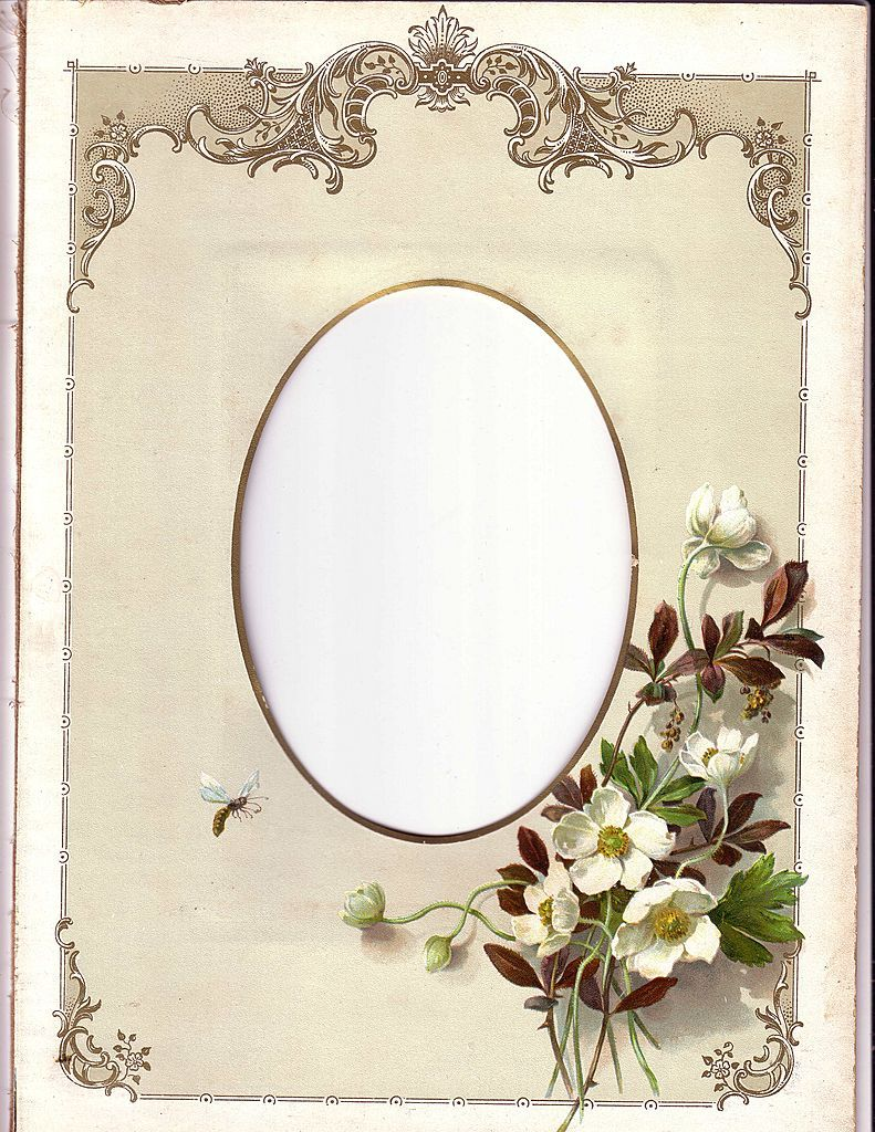 Lovely Chromolithograph Page from Victorian Photograph Album, c ...