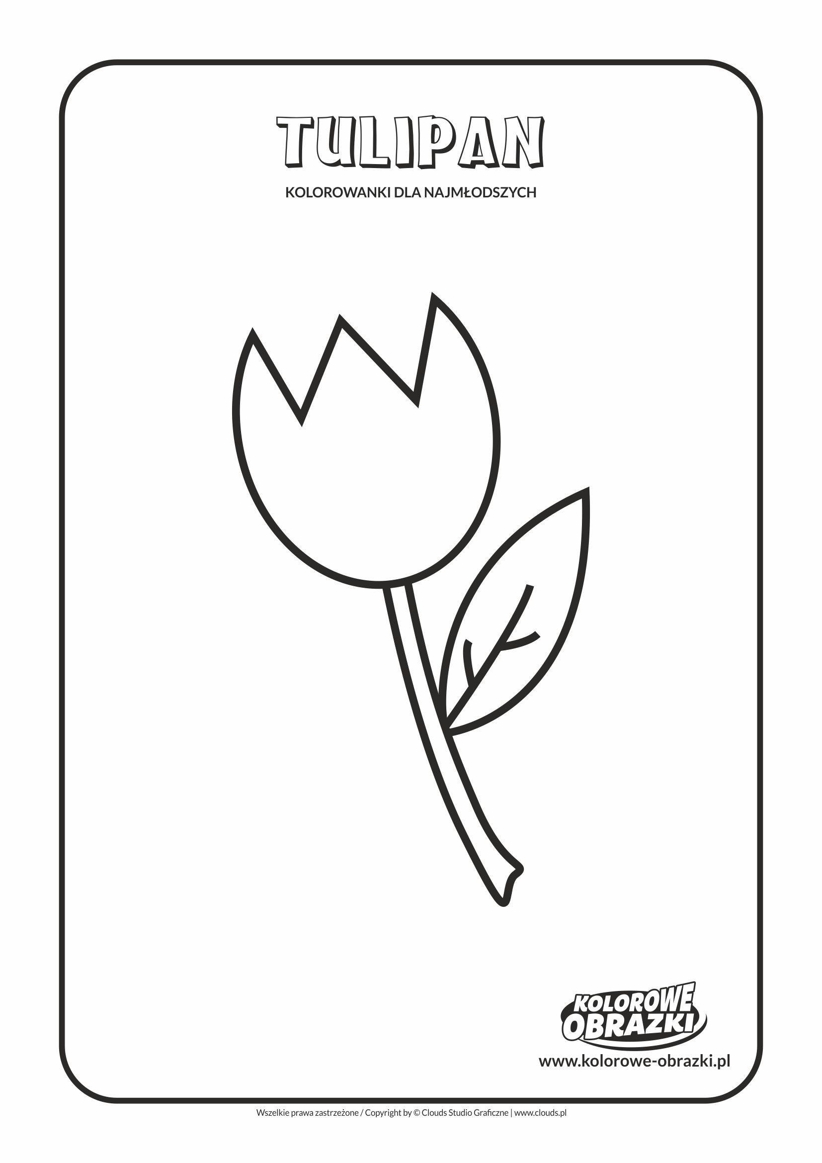 Proste Kolorowanki Dla Najmlodszych Kwiaty Tulipan