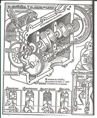 How To Keep Your Vw Alive John Muir 19181977 Ilustracin De