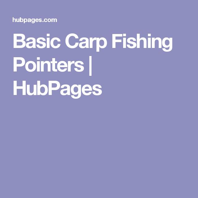 Basic Carp Fishing Pointers | HubPages